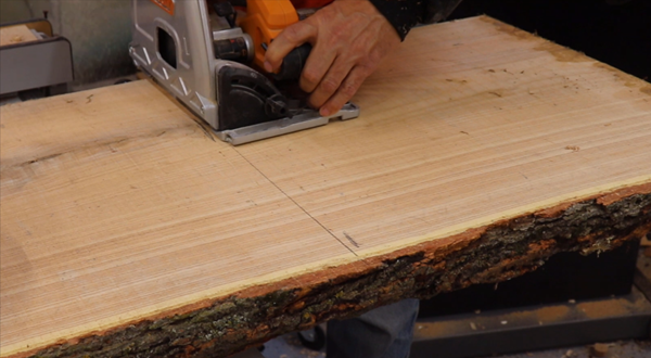 using a track saw to make rough cuts on the slab of Kentucky Coffee Wood